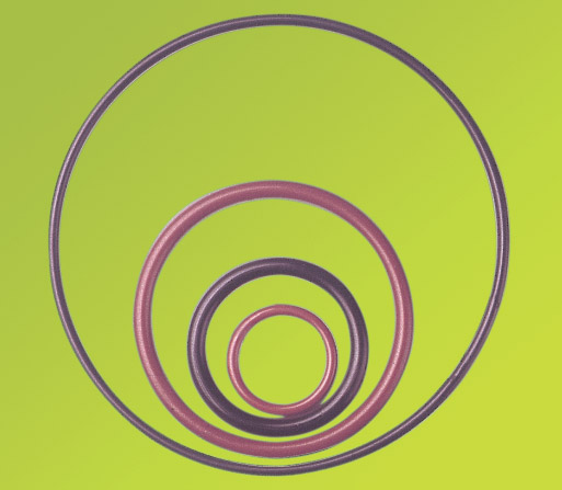 O-ring Ptfe
